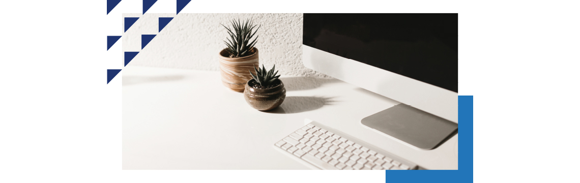 computer workspace with decorative succulent plants